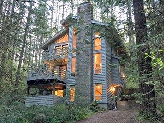 42SL 3-Story Cabin close to Skiing and Hiking Mt. Baker - Glacier vacation rentals