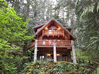 47SL Mountain Cabin with a Private Hot Tub and WiFi - Glacier vacation rentals