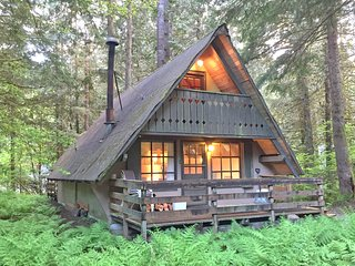 86SL Rustic Pet Friendly Cabin near Mt. Baker - Glacier vacation rentals