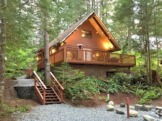 98SL Cozy Pet Friendly Cabin with a Hot Tub and WiFi - Glacier vacation rentals