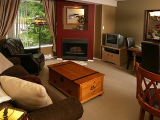 Nice Condo with Internet Access and A/C - Whistler vacation rentals