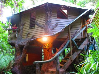 2 bedroom Tree house with Deck in Cape Tribulation - Cape Tribulation vacation rentals