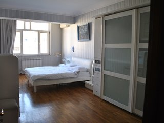 Artistic Apartment in city center - Baku vacation rentals