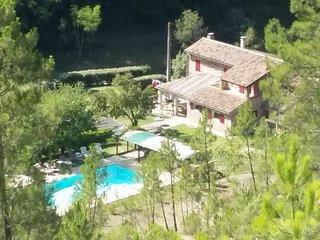 Gite 4-6 pers dans un mas en pierre avec piscine - Banne vacation rentals