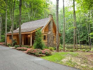 1 bedroom House with Grill in Blue Ridge - Blue Ridge vacation rentals