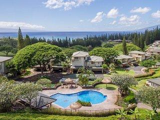KAPALUA GOLF VILLA #23V3,4 - Kapalua vacation rentals