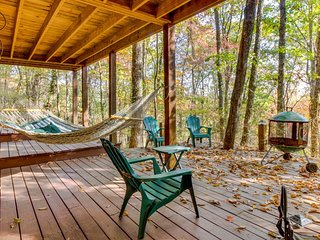 Lovely cabin w/screened-in porch, swing, hammock & hot tub - Ellijay vacation rentals
