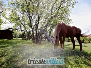 RANCH in Sezana (SLOVENIA) 20 minutes from TRIESTE - Villa Opicina vacation rentals