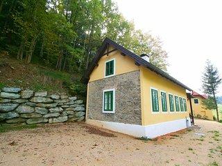 1 bedroom House with Internet Access in Prigglitz - Prigglitz vacation rentals