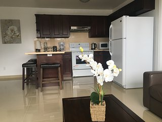 New built 3bed/2bath close to waikiki - Kahala vacation rentals