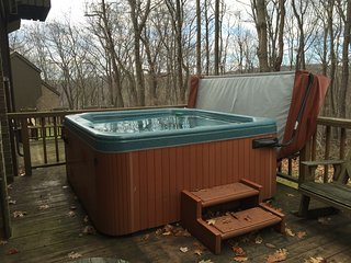 Private Hot Tub, Free Shuttle, and Large Space! - Seven Springs vacation rentals