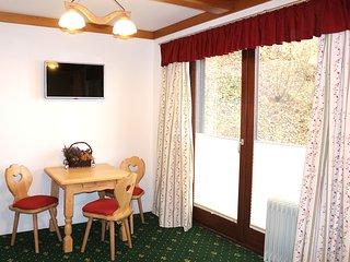 Apartments at Berghaus Glockner - Studio (Balcony) - Heiligenblut vacation rentals