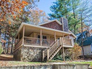 Cozy 3 bedroom House in Black Mountain - Black Mountain vacation rentals