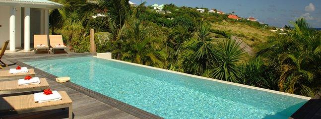 Villa Blue Lagoon 2 Bedroom SPECIAL OFFER - Grand Cul-de-Sac vacation rentals