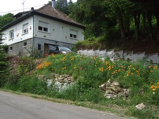 3 bedroom House with Internet Access in Breitenbach - Breitenbach vacation rentals