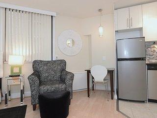 Sleek Design Studio Apartment in Bethesda - Bethesda vacation rentals