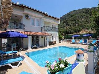 Perfect 6 bedroom Villa in Yesiluzumlu - Yesiluzumlu vacation rentals