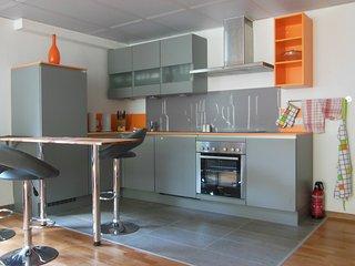 Schöne und luxuriöse Wohnung im hellen Souterrain - Forchheim vacation rentals