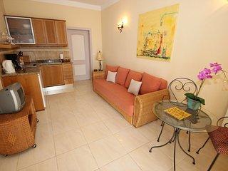 Nice 1 bedroom Guia de Isora Apartment with Internet Access - Guia de Isora vacation rentals