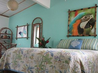 """JOSE"" at Toucan Stay Inn (A/C, WiFi, Kitchen, Queen Bed, Private Bath) - Punta Uva vacation rentals"