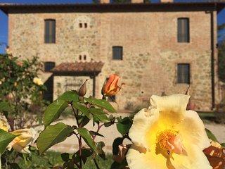 Borgo Giorgione Villa 12 Sleeps - Monteleone d'Orvieto vacation rentals