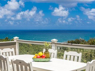 Wonderful House with Internet Access and Washing Machine - Princeville vacation rentals