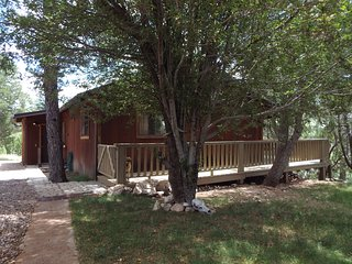 The Brown Cabin: Cozy & freshly renovated, 4 acres, horse corral, large deck!!! - Heber vacation rentals