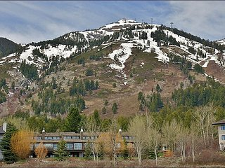 Easy, Flat Walk to the Tram, Gondola, Ski School, Shops, Restaurants - Multiple Living Rooms, Private Sauna, Washer & Dryer In Unit (3517) - Jackson Hole Area vacation rentals