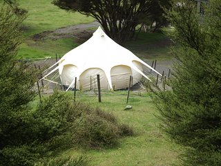 Nice 1 bedroom Tented camp in Featherston - Featherston vacation rentals