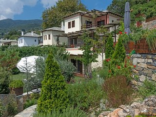 Pelion Private Residence at Milies village, with private pool - Vyzitsa vacation rentals