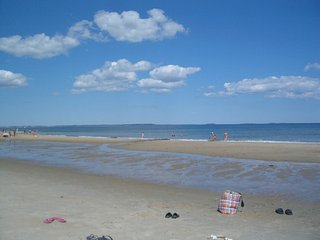 Sunny Beachfront Cottage with Spectacular Views - Saco vacation rentals