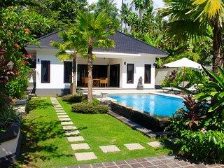 Cozy Villa with Internet Access and A/C - Kaliasem vacation rentals