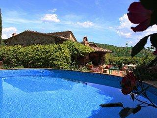 Comfortable 4 bedroom House in Panzano with Internet Access - Panzano vacation rentals