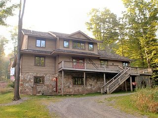 White Tail Lodge is an ideal choice, year round, for a trip to Canaan Valley! - Davis vacation rentals