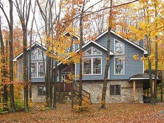"Mountain vacation home, ""Starry Nights"", great getaway! - Davis vacation rentals"