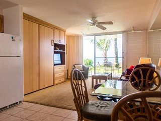 Napili Shores Resort I-170 - Napili-Honokowai vacation rentals
