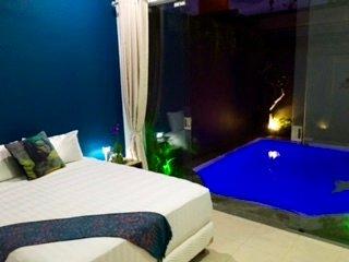 Central Seminyak Petitenget BRAND NEW 2 or 3 bedroom villa, Rice field views - Seminyak vacation rentals