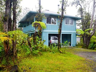 Kahu ''Io - Guardian Hawk - Volcano vacation rentals