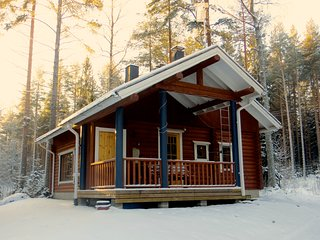 3 bedroom Cottage with Internet Access in Koli - Koli vacation rentals