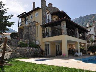Deniz Villa - Ovacik vacation rentals