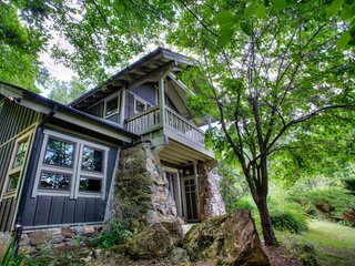 Snowball Mountain Hideaway - Balsam Grove vacation rentals