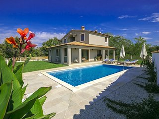 Modern Design Villa Mari with Pool in Central Istria - Svetvincenat vacation rentals