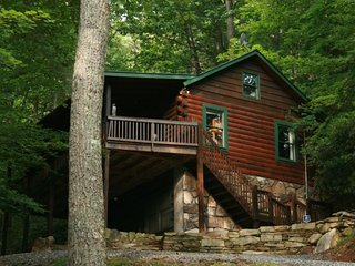 Valley Springs - Gated Mountain Community - 2 bedrooms, 1 bath and recreation room - East Ellijay vacation rentals