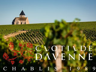 Cozy 2 bedroom Bed and Breakfast in Chablis with Internet Access - Chablis vacation rentals
