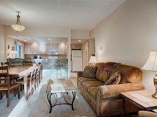 Sunny 2 bedroom Breckenridge Condo with Internet Access - Breckenridge vacation rentals