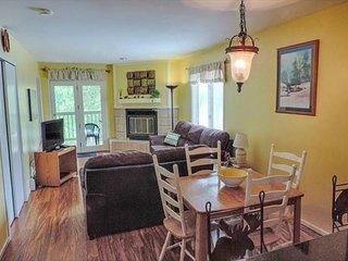 Woodbridge Inn Condo 207 Frisco Vacation Rentals Colorado - Frisco vacation rentals