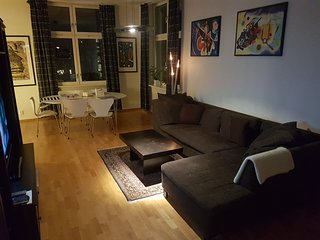 Large apartment close to city center - Oslo vacation rentals