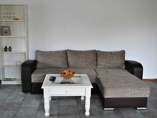 1 bedroom Condo with Television in Druskininkai - Druskininkai vacation rentals
