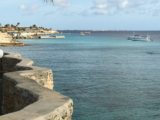 Oceanfront, E-11 Sand Dollar, fully renovated - Kralendijk vacation rentals