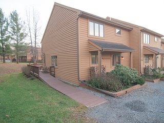 Nice House with Shared Outdoor Pool and DVD Player - Canaan Valley vacation rentals